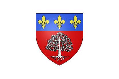 Bandera Saint-Léger-en-Yvelines