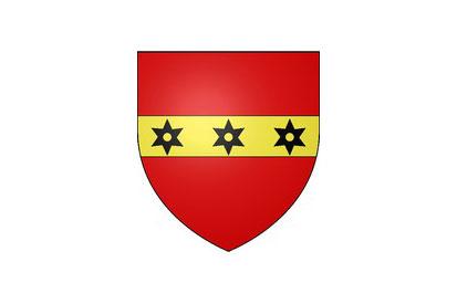 Bandera Brières-les-Scellés