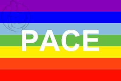 Bandera PACE
