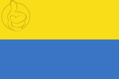 Bandera República  Ucraniana (1917-1921)