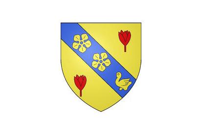 Bandera Boynes