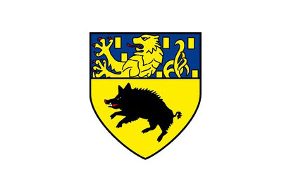 Bandera Netphen