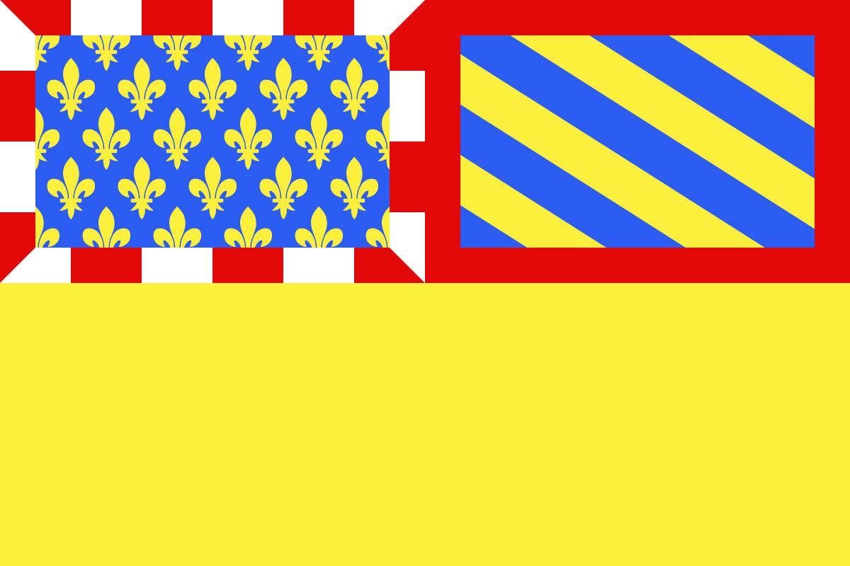 Bandera Côte-d'Or