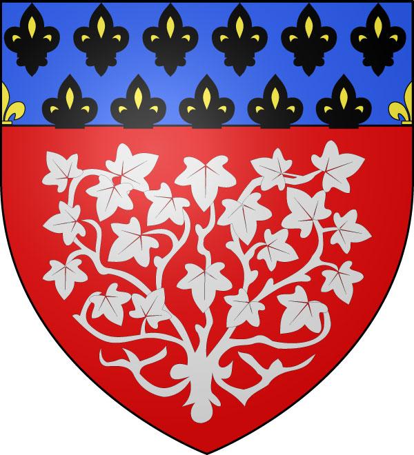 Bandera Amiens