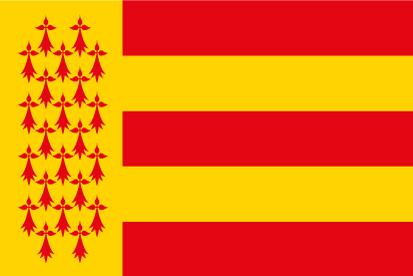 Bandera Pays Bigouden