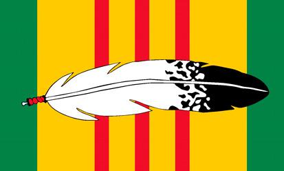 Bandera Veteranos Nativos de Vietnam