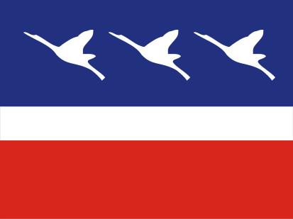 Bandera Guaratinguetá