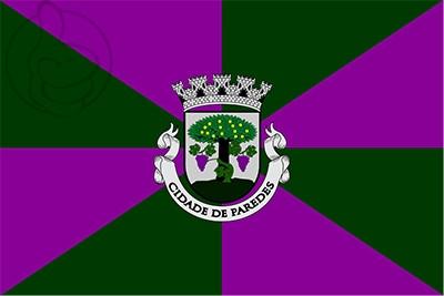 Bandera Paredes