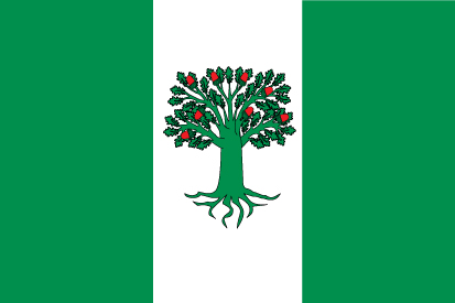 Bandera A Cañiza