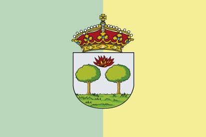 Bandera Aldeamayor de San Martín