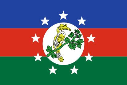 Bandera Chin