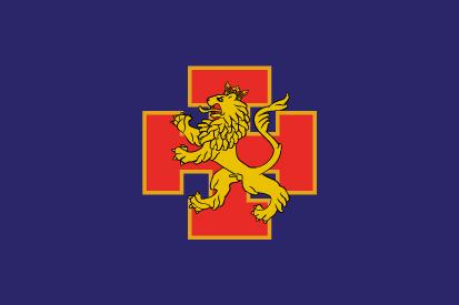 Bandera OJE Organización de Juventudes Españolas