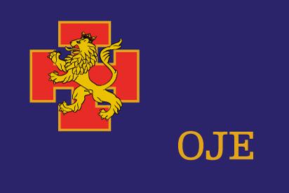 Bandera OJE, versión banderín