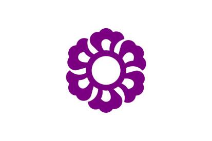 Bandera Fujieda