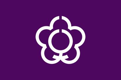 Bandera Tenri (Nara)