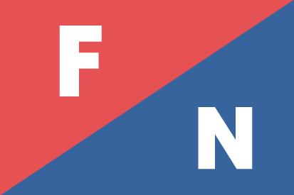 Bandera Fuerza Nueva