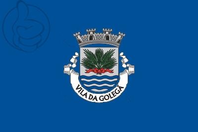 Bandera Golegã
