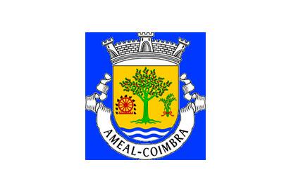 Bandera Ameal