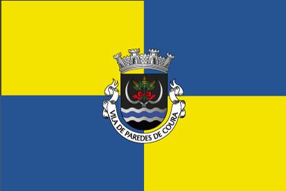 Bandera Paredes de Coura