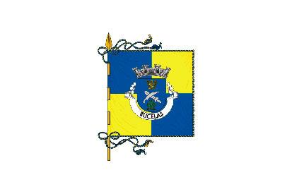 Bandera Bucelas