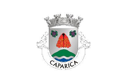 Bandera Caparica