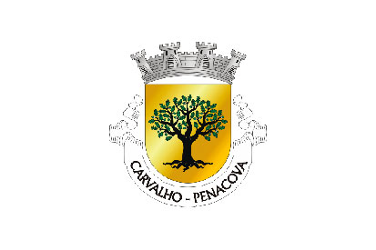 Bandera Carvalho (Penacova)