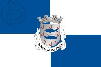 Bandera São João da Pesqueira