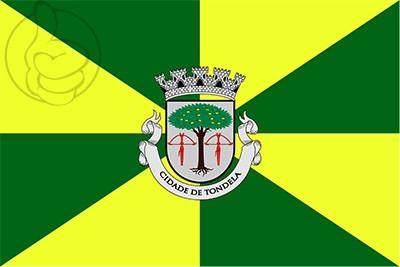 Bandera Tondela