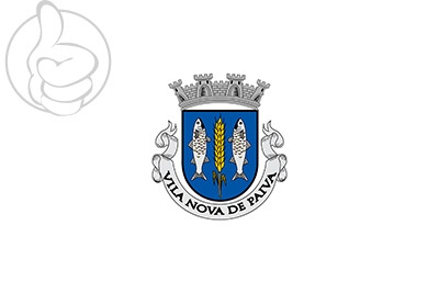 Bandera Vila Nova de Paiva