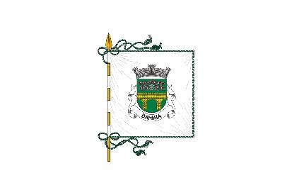 Bandera Damaia