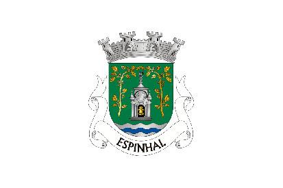 Bandera Espinhal