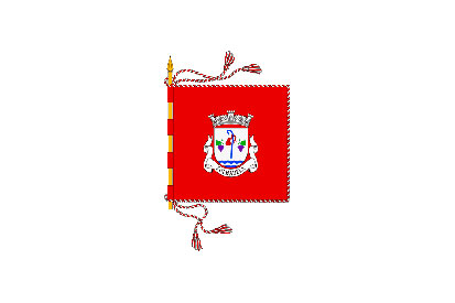Bandera Folhadela