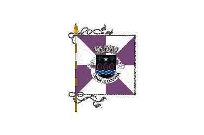 Bandera Gouveia