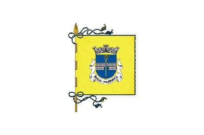 Bandera Maximinos