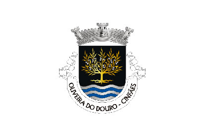 Bandera Oliveira do Douro (Cinfães)