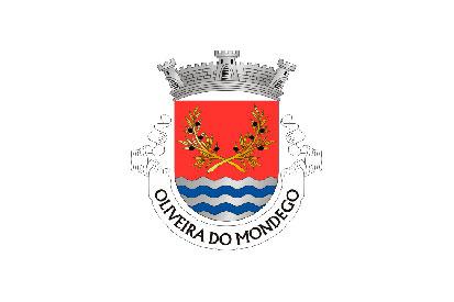 Bandera Oliveira do Mondego