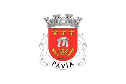 Bandera Pavia (Mora)