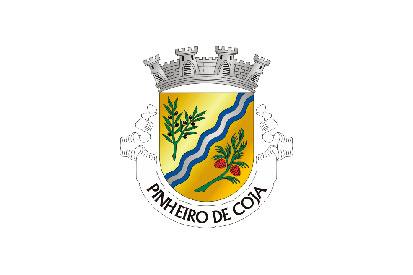 Bandera Pinheiro de Coja