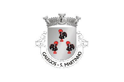 Bandera São Martinho de Galegos