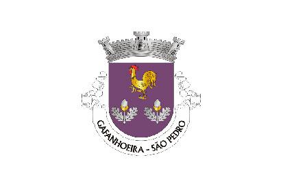 Bandera São Pedro de Gafanhoeira