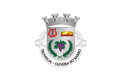 Bandera Troviscal (Oliveira do Bairro)