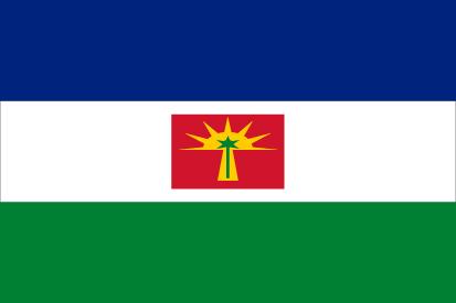 Bandera Estado de Barinas