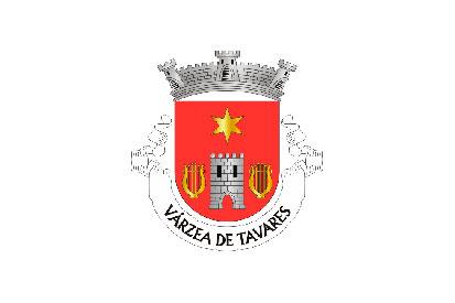 Bandera Várzea de Tavares