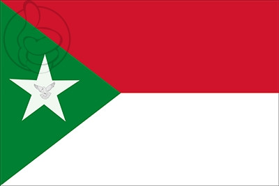 Bandera Estado de Trujillo
