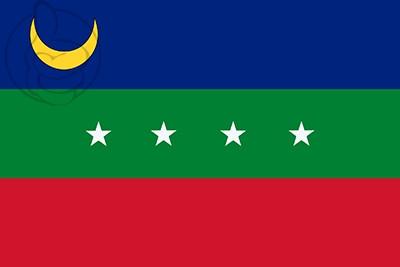 Bandera Cárdenas