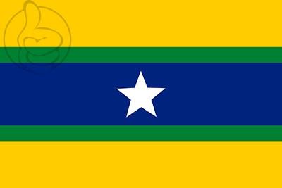 Bandera Piar
