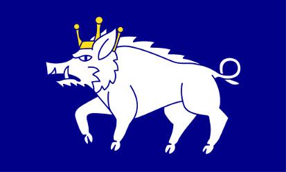 Bandera Kingswinford, Staffordshire