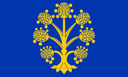 Bandera Appleby-in-Westmorland, Westmorland