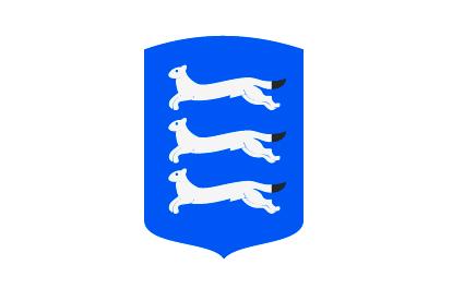 Bandera ostrobotnia del sur