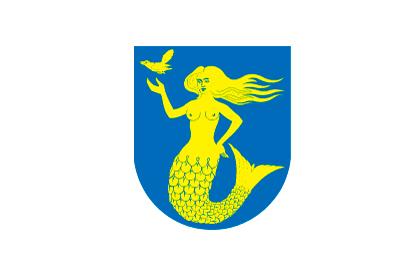 Bandera Paijanne Tavastia,region finesa,finlandia,finland,suomi,finesa